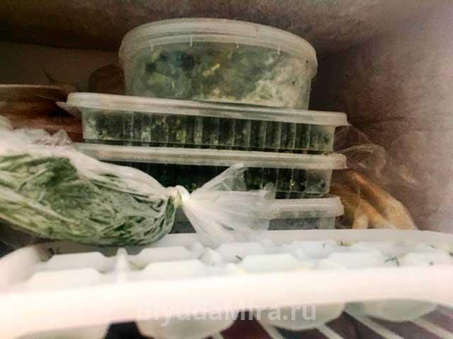 Зелень в морозилке