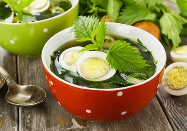 Суп из крапивы: как варить, польза и вред крапивного супа
